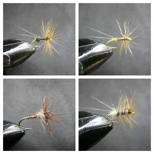 -SEC 33 4 MODELS 1 DOZEN  DRY FLIES FOR FLY FISHING