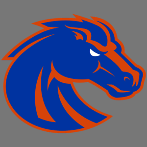 Details about Boise State Broncos NCAA Football Vinyl Sticker Car Truck  Window Decal Laptop