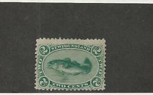 Newfoundland-Postage-Stamp-24-Mint-Hinged-1865-Fish