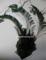Peacock Feather Pad - Pads; Headband/hats/bridal/craft/dress