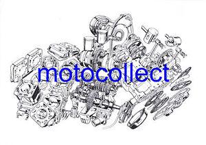 Suzuki-RG500-motor-Despiece-Dibujo-A3-impresion-Envio-Gratis-en-todo-el-mundo