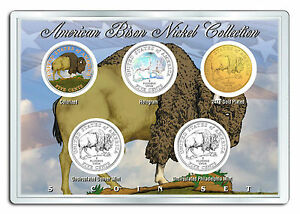 Details about 2005 BUFFALO BISON U S  MINT NICKEL COLLECTION * SPECIAL  EDITION * w/DISPLAY