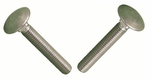 M12 X 150 Cup Square Carriage Coach Bolts Stainless DIN 603-2 PACK