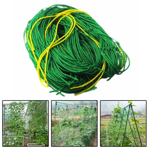 Heavy Duty GardenTrellis Netting Climbing Plants Support Net Fruits Vine Veggie