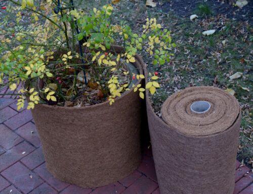 HaGa® Winterschutz für Pflanzen Kokosmatte auf Spinnvlies in 0,5m Br und 600g//m²
