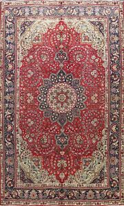 Floral Semi Antique Traditional Area Rug Wool Hand-knotted Oriental Carpet 7x10