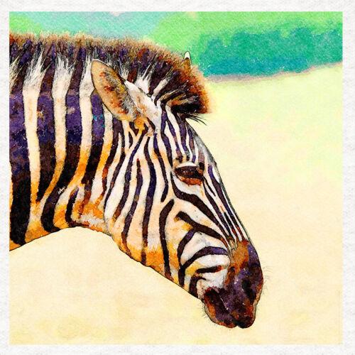 Zebra Portrait Watercolour Print Fabric Craft Panel