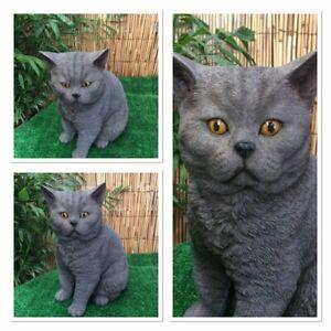 Vivid Arts Real Life Range Grey British Short Hair Cat Indoor Outdoor Ebay