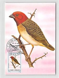 Franc S. Tome Mk 1983 Oiseaux Rotkopfweber Birds Carte Maximum Card Mc Cm M285-afficher Le Titre D'origine