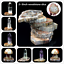 Natural-Polished-Microsection-Petrified-Wood-Quartz-Crystal-Gift-Healing-1PC miniature 4