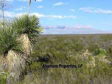25 ACRE WEST TEXAS RANCH / HUNT / HORSE / HOMESITE PROPERTY--Only $150 Per Month