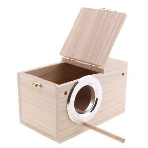 Allevamento-Box-In-Legno-Massello-Nido-di-Scatole-Per-Uccelli-Pappagallo-S