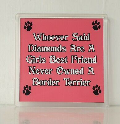 Whoever Said Diamonds Girls Best Friend Never Owned a Border Collie Keyring,Gift