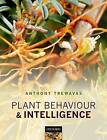 Plant Behaviour and Intelligence by Anthony Trewavas (Paperback, 2015)
