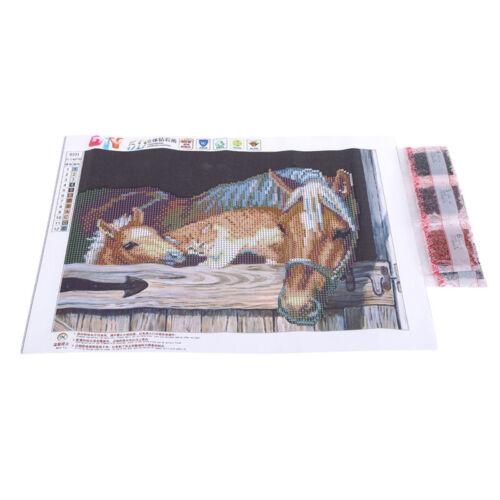 5d À faire soi-même Diamant Peinture chevaux complet Perceuse Craft Diamant broderie decor S