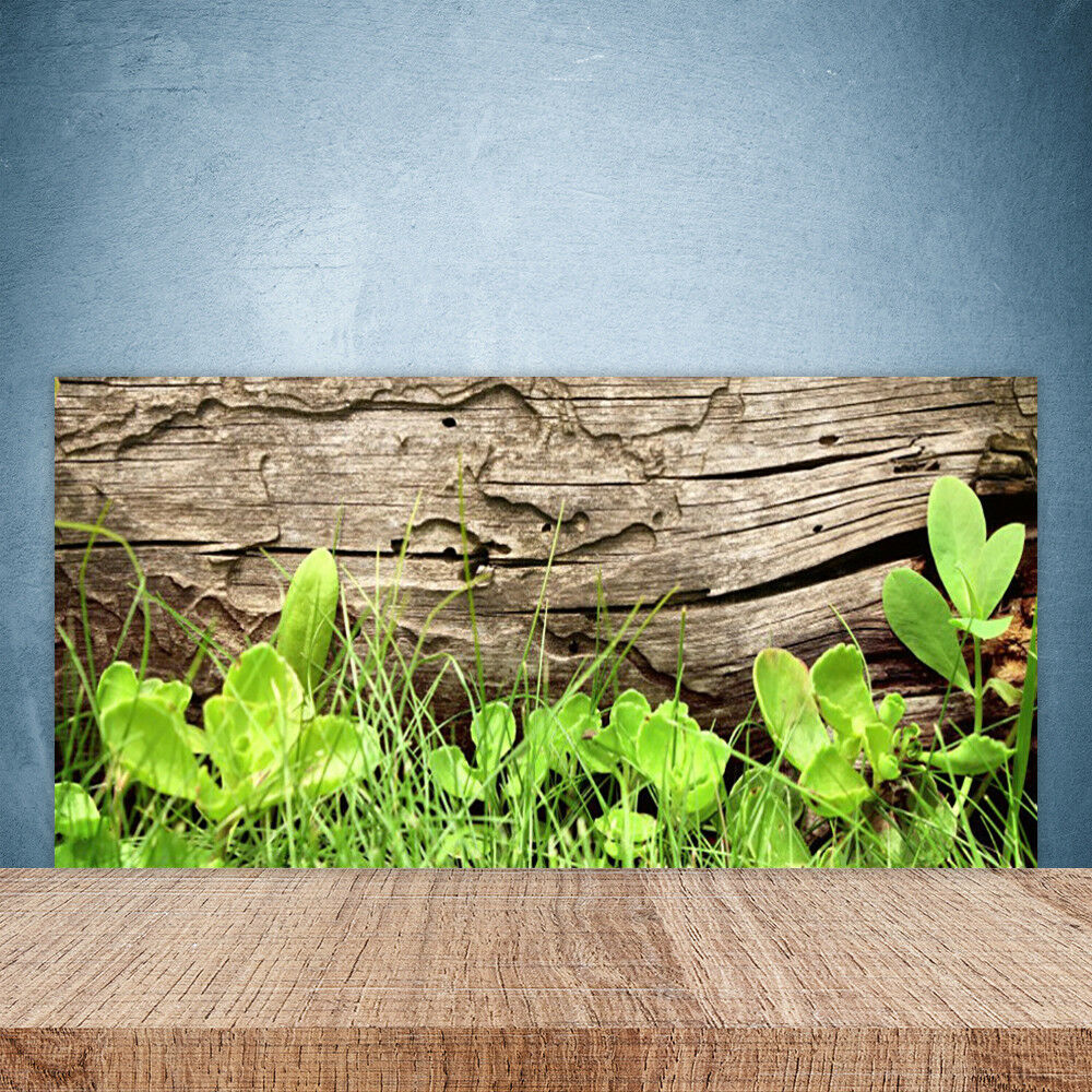 Cupboard kitchen glass wall panel 100x50 floral leaves grass
