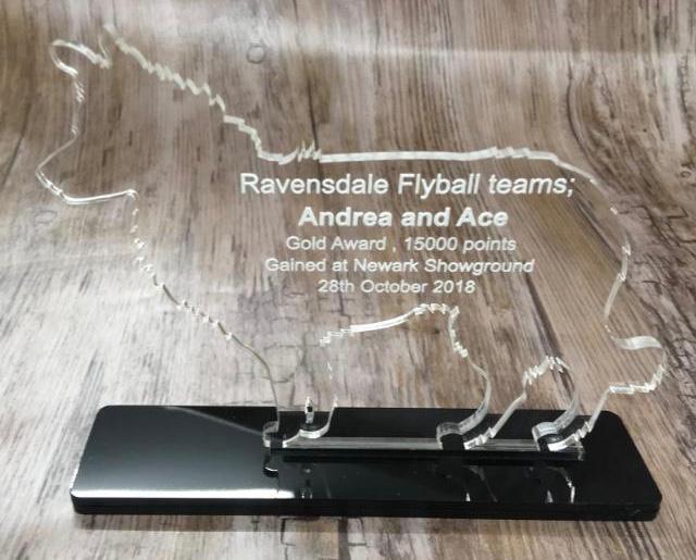 Personnalisé Gravé Border Collie Chien Corporate Trophy Award Corporate Chien personnel de reconnaissance f6d498