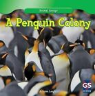 A Penguin Colony by Autumn Leigh (Hardback, 2013)