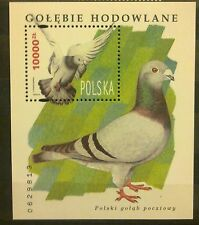 POLAND STAMPS MNH Fibl112 Sc3216 Mibl126 block - Breeding pigeons,1994,clean