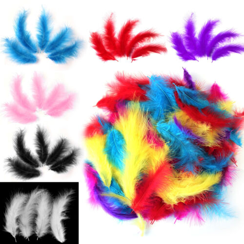 200Pcs Multi Coloured Natural Feathers 12-15cm Fluffy Childrens Arts and Craft