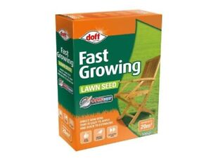 Fast Growing Lawn Gr Seed Quick Grow