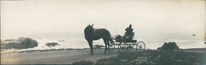 USA-Monterey-California-Vintage-silver-print-Panoramic-View-Vue-panoramique