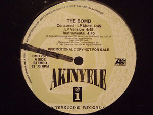 AKINYELE-LARGE-PROFESSOR-THE-BOMB-12-034-1993-RARE