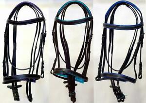Horse-Full-Accented-Purple-Teal-Royal-Browband-Noseband-Black-English-Bridle