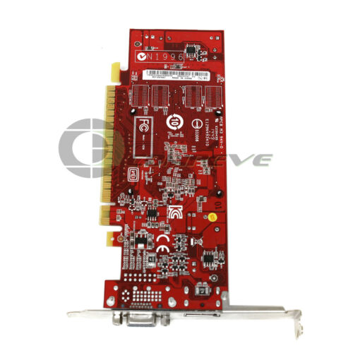 IBM GT620 1 GB 64bit PCI-E VGA-DP VIDEO CARD FRU 03T7121
