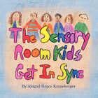 The Sensory Room Kids Get in Sync by Abigail Grace Kroneberger (Paperback / softback, 2008)