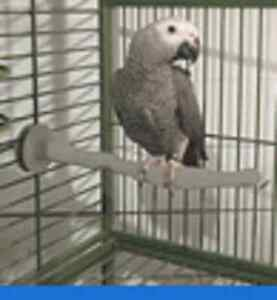 Parrot Perch Pet Bird Perch Warm Thermal Heated Cage Grooming Stand Perch
