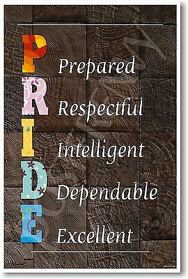 PRIDE - NEW Classroom Motivational Poster