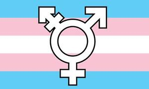 3/'x5/' Rainbow Born This Way Flag Banner Transgender Gay Pride Peace GLBT New 3X5
