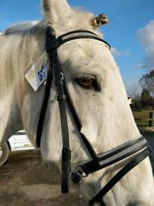 full cob Heritage padded English leather comfort bridle pony