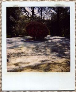 SOLARISTIK-PHOTO-POLAROID-ORIGINALE-CRACHE-BETON-LA-PLAGE