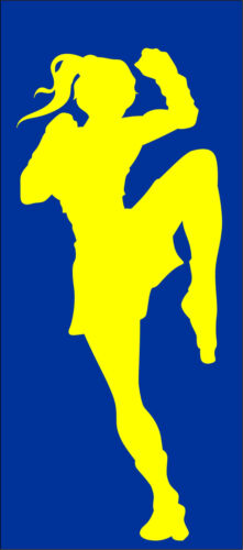 Autoaufkleber Thaiboxen 005 Boxing  Aufkleber Sticker Sportaufkleber Kickboxen