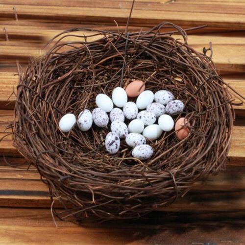 Cute Bird//Egg//Nest Micro Landscape Garden Decor Miniature Fairy Garden Little