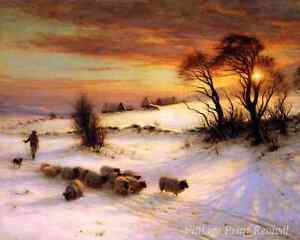 Herding sheep in Winter by J Farquharson Scotland Sunset Home 8x10 Print 1121