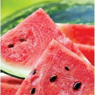 Summer Seeds Watermelon Lunch Napkins 16 Pack Summer Birthday Party Decor