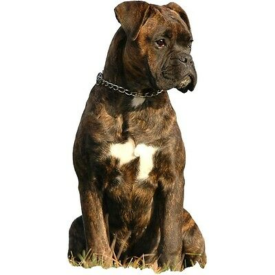 dauerhaft haltbarer Sticker Petsigns Hunde Aufkleber Bobtail Old English Sheepdog