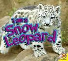 I Am a Snow Leopard by Aaron Carr (Paperback / softback, 2015)