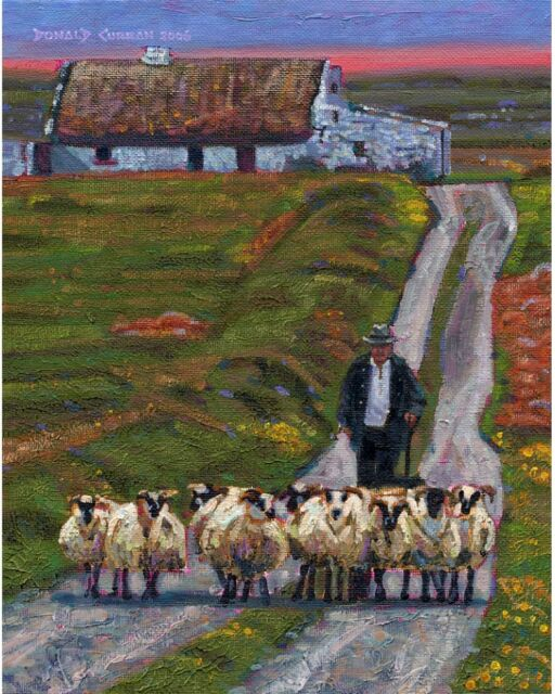 COLOR PRINT OF OIL PAINTING, IRELAND SERIES #138 SHEEP AND COTTAGE
