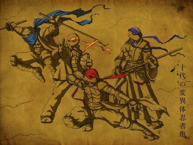 """Teenage mutant ninja turtles 2014 Movie  Fabric poster 17"""" x 13""""  Decor 03"""