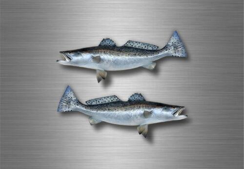2x sticker vinyl fish boat kayak  canoe fishing decal salmon steelhead decor