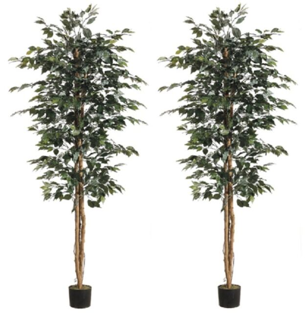 6 5 Artificial Ficus Tree In Pot Silk Plant Decor Palm Pack Of 2