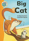 Big Cat by Pippa Goodhart (Paperback, 2011)