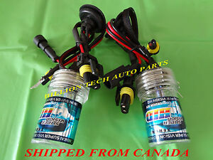 H11-SINGLE-BEAM-XENON-HID-REPLACEMENT-BULB-8000K