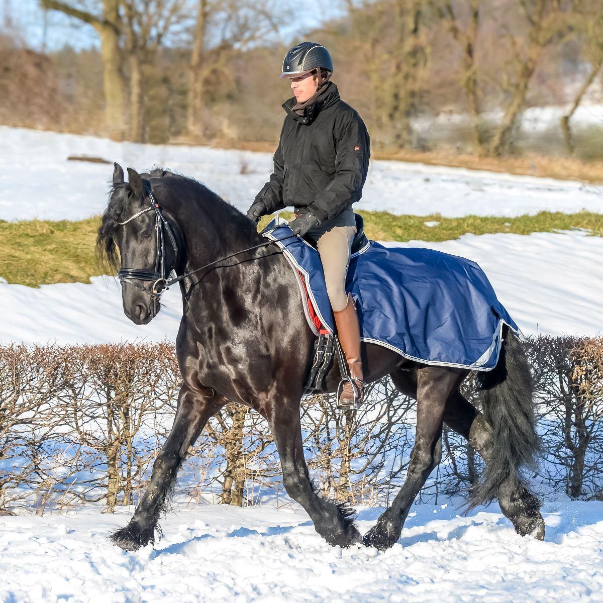 Alfombra Bucas Equitación ejercicio Reflectante