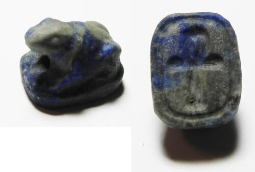 ZURQIEH -ev14- Ancient Egypt. New Kingdom. 1550 - 1077 B.C. Lapis Lazuli Frog Sh
