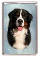 Bernese Mountain Dog Fridge Magnet No 1 by Starprint